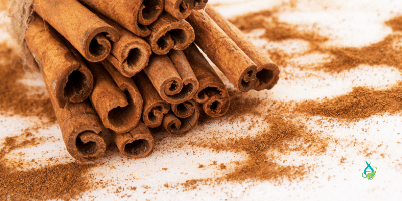 image of cinnamon sticks