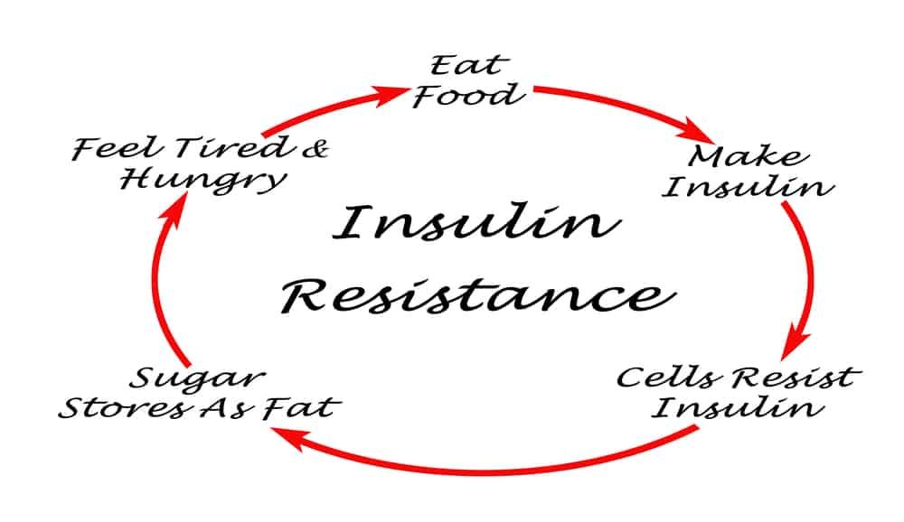 Insulin Resistance cycle